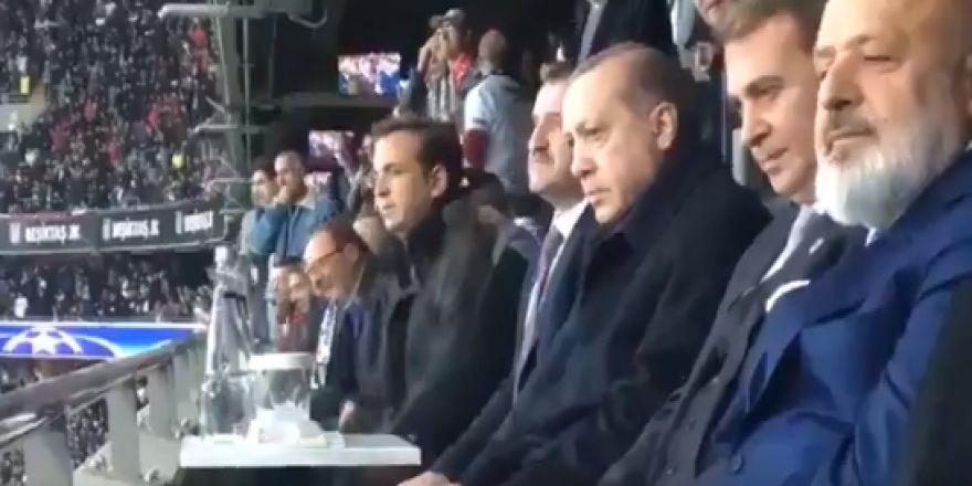 Cumhurbaşkanı Erdoğan, Cenk Tosun'un penaltıdan attığı gol sonrası böyle sevindi
